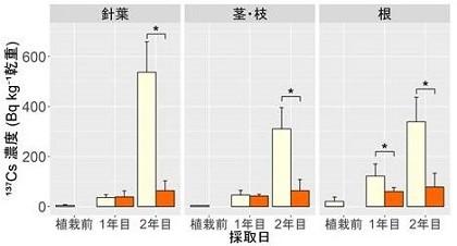 図3.ヒノキ苗木各部位の放射性セシウム137の濃度の推移