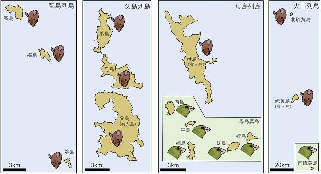 図4.オガサワラカワラヒワとクマネズミの分布を示す図
