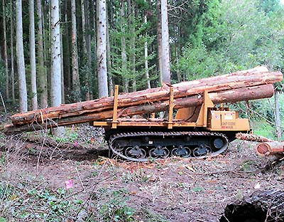 Photo: Transporting 8m logs with a medium-sized forwarder